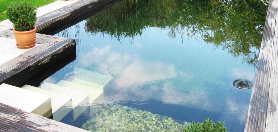 schwimmteichbau dresden werner ey er sch ne g rten e k pool for nature. Black Bedroom Furniture Sets. Home Design Ideas